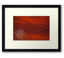 Red Sky White Rose Framed Print