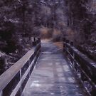Shenandoah - Bridge by Susan Epps Oliver