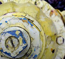 yellow hydrant  by prescott mccarthy