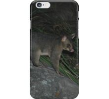 Possum, Garie Beach, Australia 2006 iPhone Case/Skin