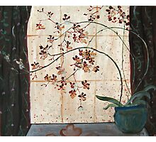 Orchid by the Window Photographic Print