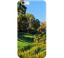 The Vineyard iPhone Case/Skin