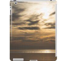 Early Flight iPad Case/Skin