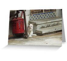 The White Guardian Greeting Card