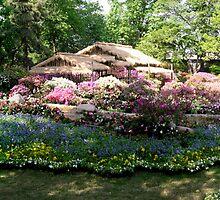 Suzhou Garden #3 by Julien Bertrand
