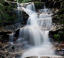 Leura Cascades in The Blue Mountains by Ben Shaw