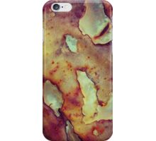 183 Rusty Flakes iPhone Case/Skin