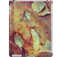 183 Rusty Flakes iPad Case/Skin