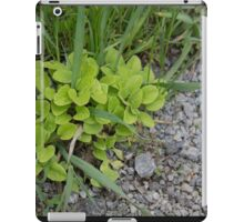 HDR Composite - Wee Green Plant Gravel and Grass iPad Case/Skin
