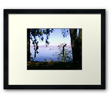 Water through trees Framed Print