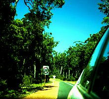 roadtrip retrospective by Amelia Rhea