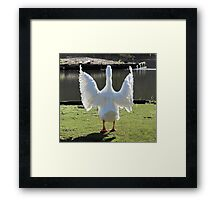 It's An Angel  or   A Flasher Framed Print