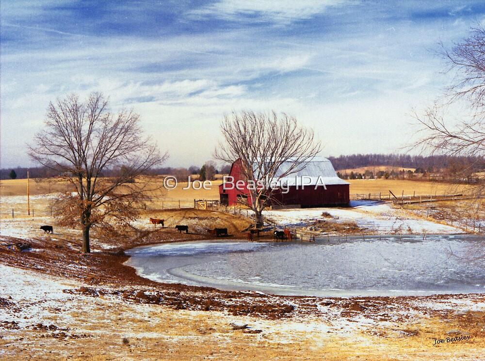 Martin Farm by © Joe  Beasley IPA