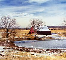 Martin Farm by © Joe  Beasley IPA
