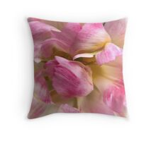 Close-up of a Soft and Frilly Pink & White Tulip ~ Pretty Spring Flower in Bloom Throw Pillow