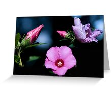 Night Blossoms Greeting Card