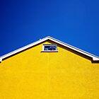 The Yellow House by Michael Walton