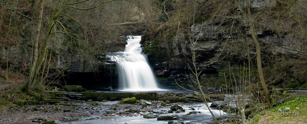 West Burton Falls by dozzie