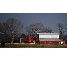 Life On The Farm Photographic Print