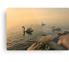 A Trio Of Swans At Sunrise Metal Print