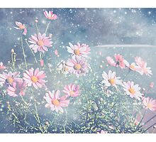 Magical Flowers Photographic Print