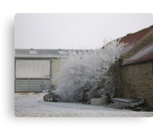 Exploding shed Canvas Print