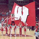 Go Badgers! by AuntieJ