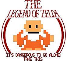 Zelda - It's Dangerous To Go Alone Photographic Print