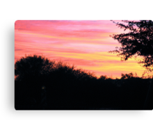 the perfect end Canvas Print