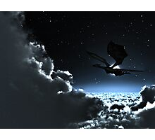 Moon Light Flight Photographic Print