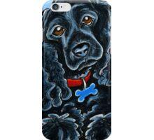 Cocker Spaniel Fitz iPhone Case/Skin