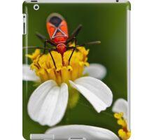 Boxelder Bug (Boisea Trivittatus) iPad Case/Skin