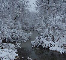 Michigan in Winter by SteveT