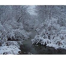 Michigan in Winter Photographic Print