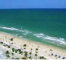 FL,FLORIDA by Johnnie R