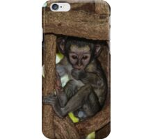 In The Womb of an African Tree iPhone Case/Skin