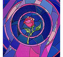 Beauty And The Beast Rose Flower Photographic Print