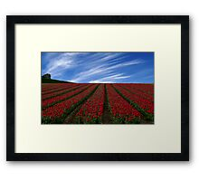 Red Carpet Framed Print