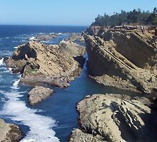 hwy 1 - oregon coast by Robbin Milne