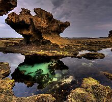 The Rock Pool  by Robert Mullner