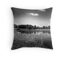 Lakeside Series 4-10 Throw Pillow