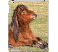 Shetland Pony in the New Forest iPad Case/Skin