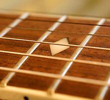 Close up of classical guitar. by NKSharp