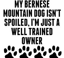 Well Trained Bernese Mountain Dog Owner by kwg2200