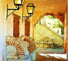 A Place in the Shade by Carolyn Staut