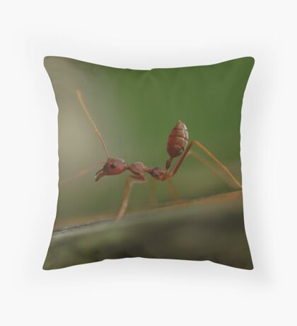 Red Ant stretching Throw Pillow