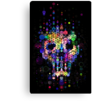 Monstrously colorful elementary particles Canvas Print
