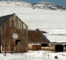 Old Barn - Heber City, Utah by Ryan Houston