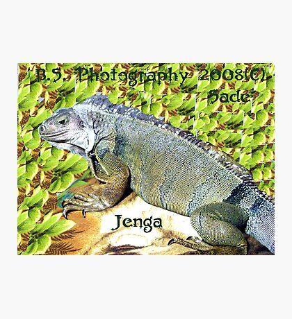 Jenga Photographic Print