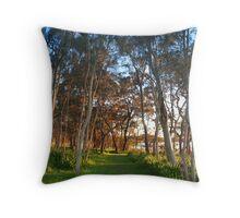 Sunrise by Tuggerah Lake, NSW Throw Pillow